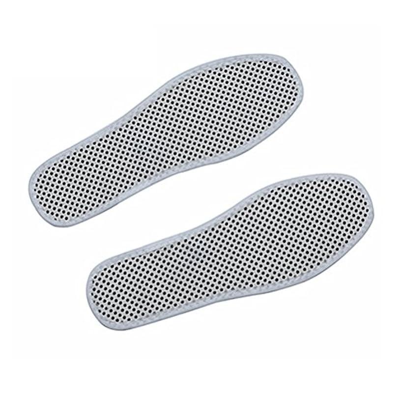 病気気候の山満員HEALLILY再利用可能な自己発熱暖房インソール靴パッド冬暖かい熱靴インサート - サイズ38(ホワイト)