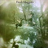 Fresh Maggots...Hatched