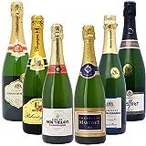 高コスパ・高品質シャンパン6本セット((W0CN05SE))(750mlx6本ワインセット)
