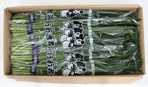 やさい ぎょうじゃ菜 山形県長井市の「ぎょうじゃ菜」 100g×6×2箱