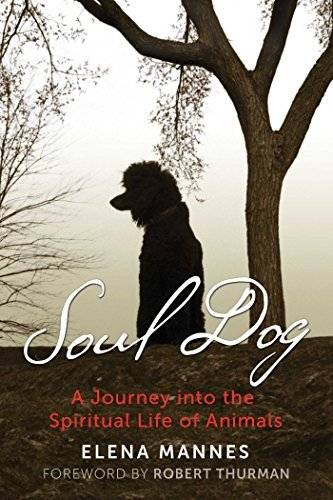 Soul Dog: A Journey into the Spiritual Life of Animals (English Edition)