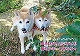 ●予約販売● ANISTAR 2020年『柴犬ひかりといちごと猫ミルキーときらら』壁掛けカレンダー