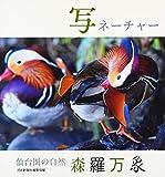 写ネーチャー―仙台圏の自然森羅万象