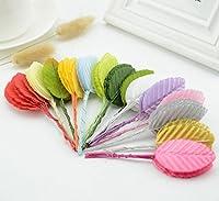 HATABO 造花 DIY スターテール 30個 ミニ ナイロン シルク 葉 造花 結婚式 装飾 DIY 花輪 ギフト スクラップブック クラフト 造花 (ランダム)