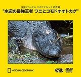 水辺の最強王者 ワニとコモドオオトカゲ ~復刻 ナショナル ジオグラフィック 名作選~(PPV-DVD)