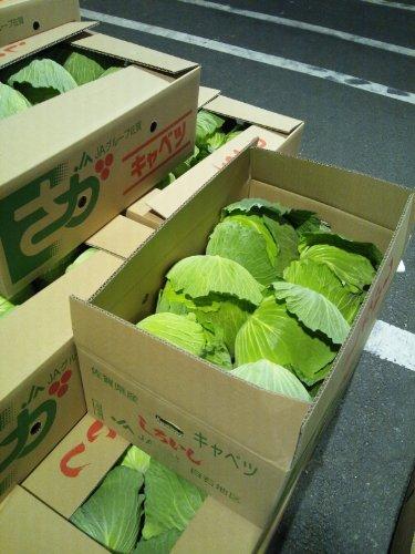 キャベツ 佐賀県産・九州各県産 1ケース4玉〜9玉入 約10kg