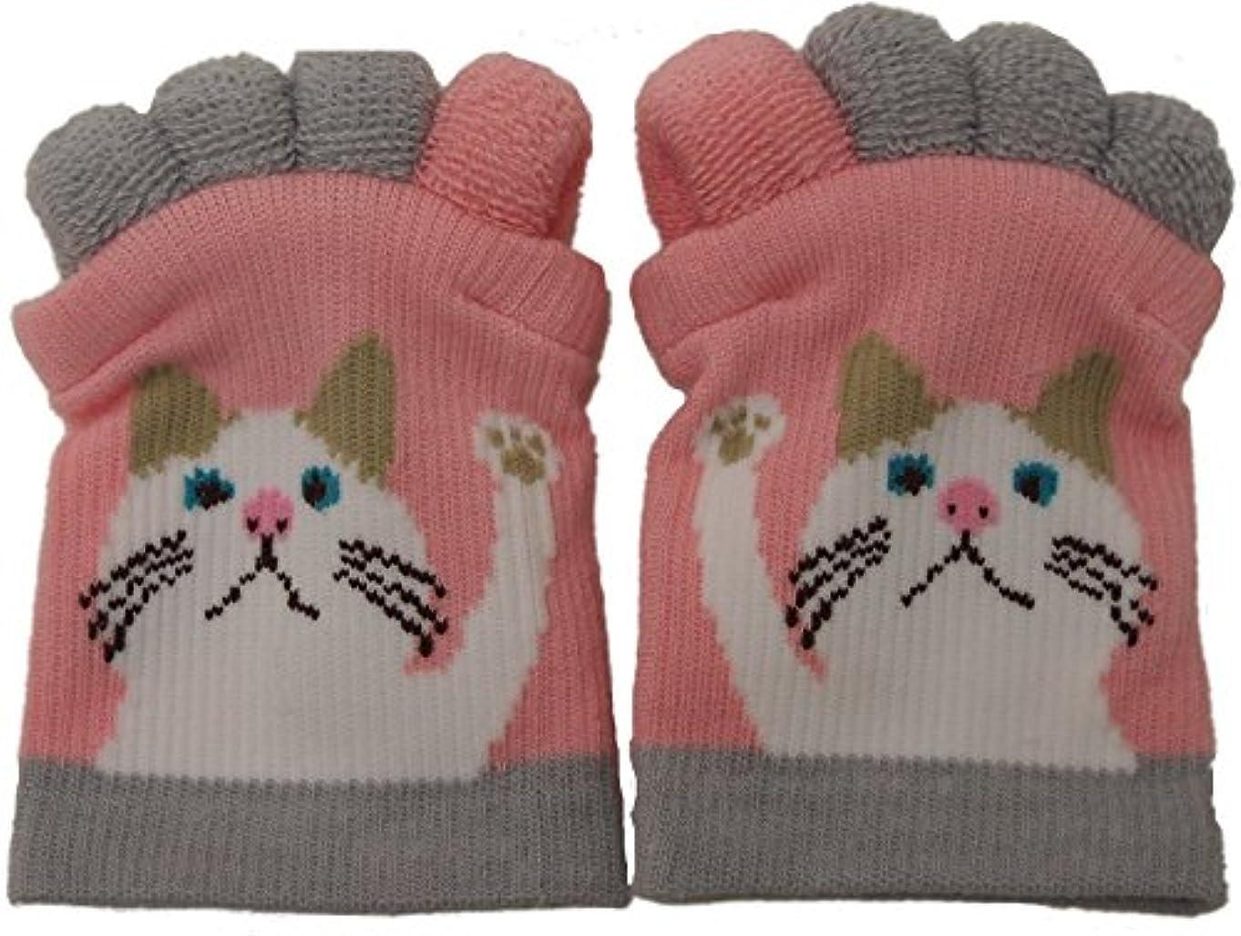 慣れているセラフ浸透するフレンズヒル 靴下 足指ソックス 5本指 (ターチャンPK(07))