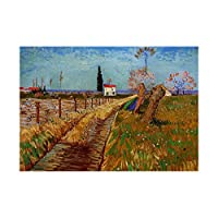 Van Gogh Path Through A Field With Willows Wall Art Print ヴァンゴッホフィールド壁