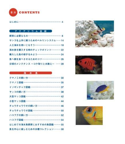 はじめての海水魚飼育 (クマノミからサンゴまで誰もが上手に飼える本)
