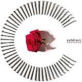 FATELESS(初回限定盤)(2CD)