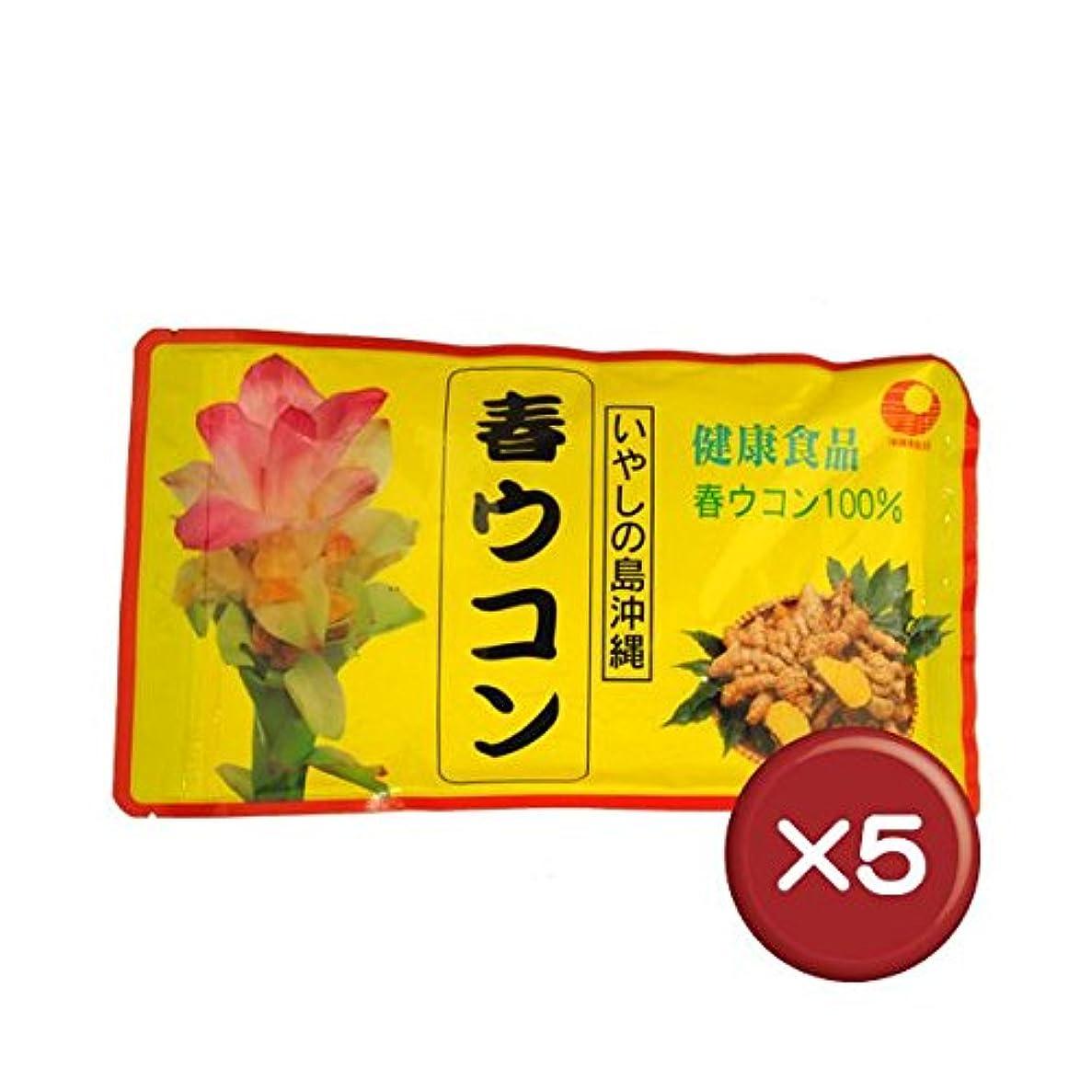 浸す評論家援助比嘉製茶 春ウコン粉(袋入) 100g 5袋セット