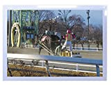 【DXポスター】安永新一のポスター フレーム付き  目指せ、ゴール! ・・・帯広競馬場にて 北海道 写真 風景 インテリア 耐水 パシャデリック  P-A2-PS-YSG-151D2B-wh P-A2-PS-YSG-151D2B-wh