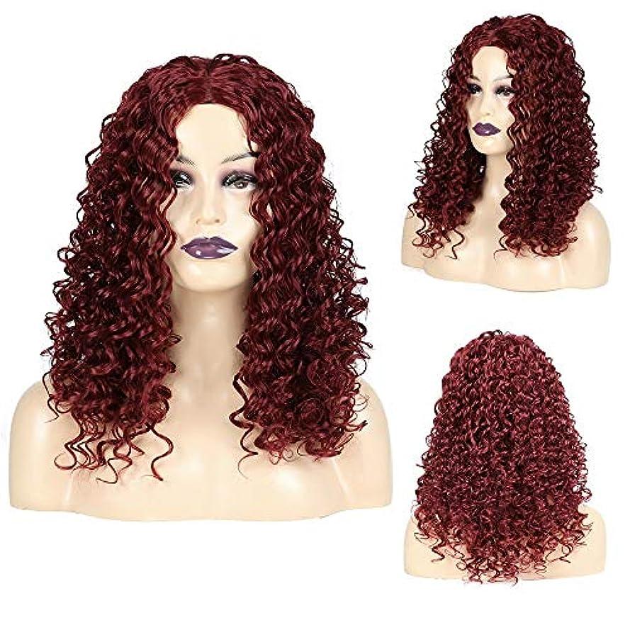 静的機転写真を描くWASAIO スタイル交換用アクセサリー合成繊維ワインレッドビッグウェーブ髪20インチディープロングカーリーウィッグ女性用 (色 : ワインレッド)