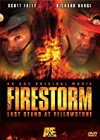 Firestorm: Last Stand at Yellowstone [DVD] [Import]