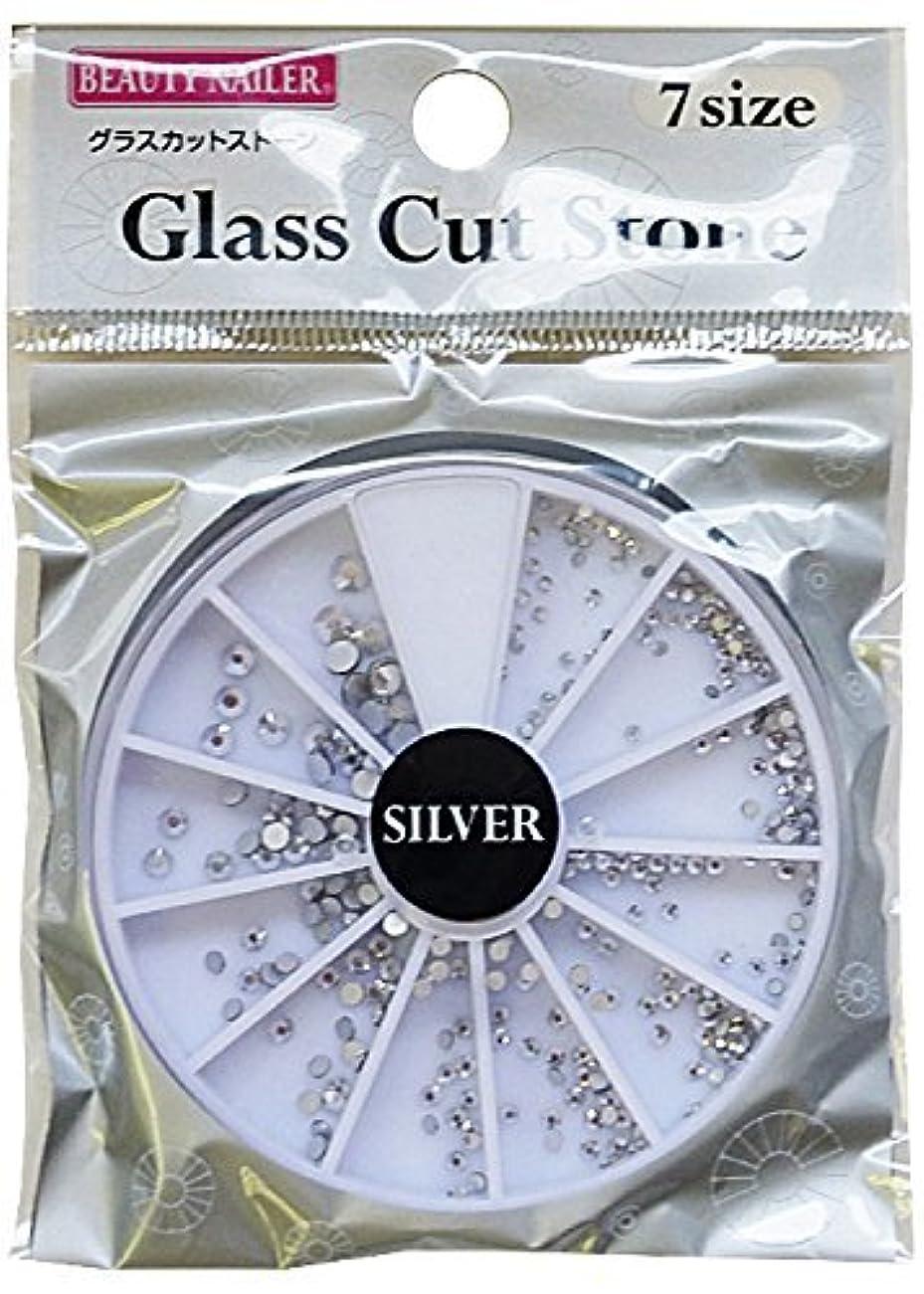 ひねくれた規定開梱ビューティーネイラー グラスカットストーン シルバー GCS-2