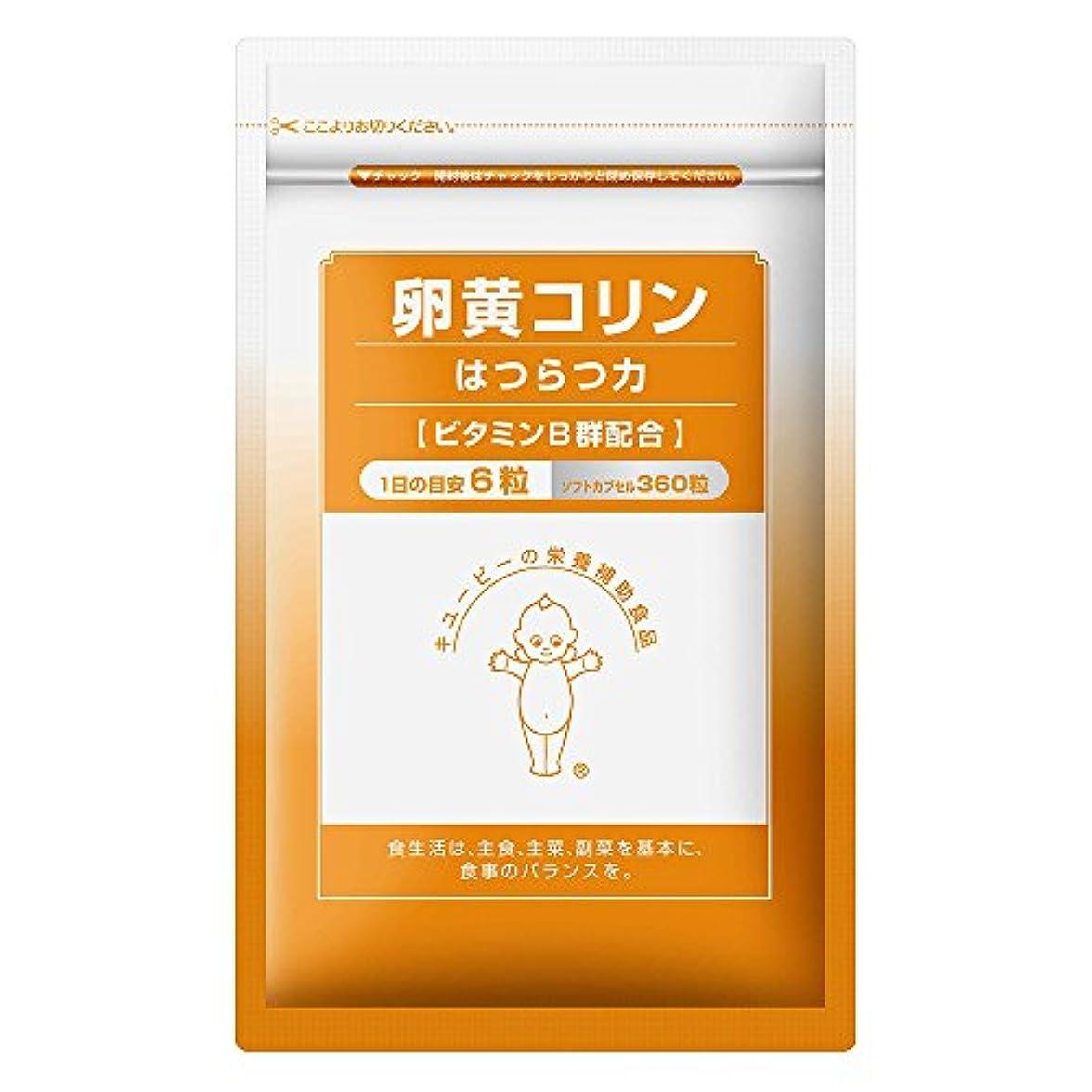 論理的に令状ピービッシュキユーピー 卵黄コリンはつらつ力 60日分 卵黄レシチン ビタミンB群 配合 サプリ