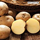 ジャガイモ 男爵薯(だんしゃくいも)の種芋 (1kg)