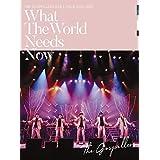 """ゴスペラーズ坂ツアー2018〜2019 """"What The World Needs Now"""