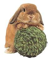 ウサギ 虐待 カップル 日本人に関連した画像-05