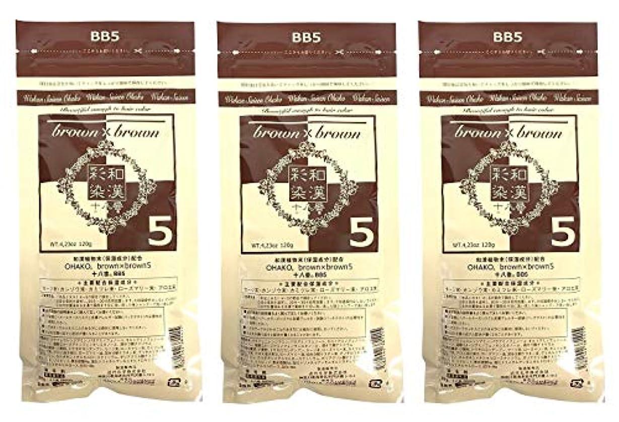 フライト日光エージェント【3個セット】グランデックス 和漢彩染 十八番 120g BB5