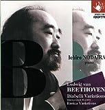 野平一郎べトーヴェンピアノ作品集 (11)