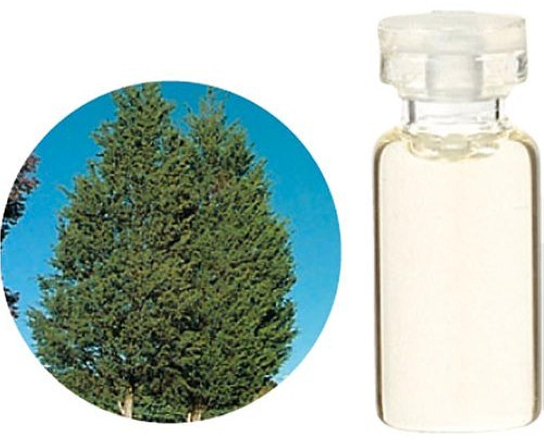 スパイひも丘生活の木 C シダーウッド バージニア エッセンシャルオイル 10ml