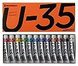 ターナー色彩 アクリル絵具 U-35 ヘビーボディータイプ 12色セット UA12C 11ml