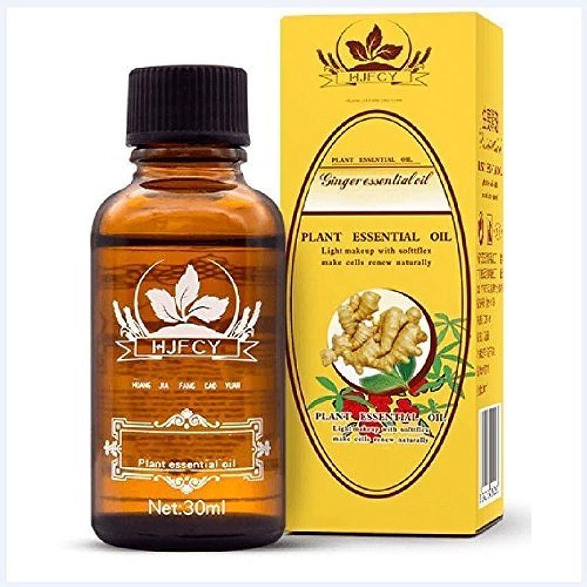 シェル薬を飲む単なるZooArts ジンジャーエッセンシャルオイル 精油 100%ピュアナチュラル ジンジャーオイル スパマッサージオイル ジンジャーオイルオーガニック 植物精油 30ml
