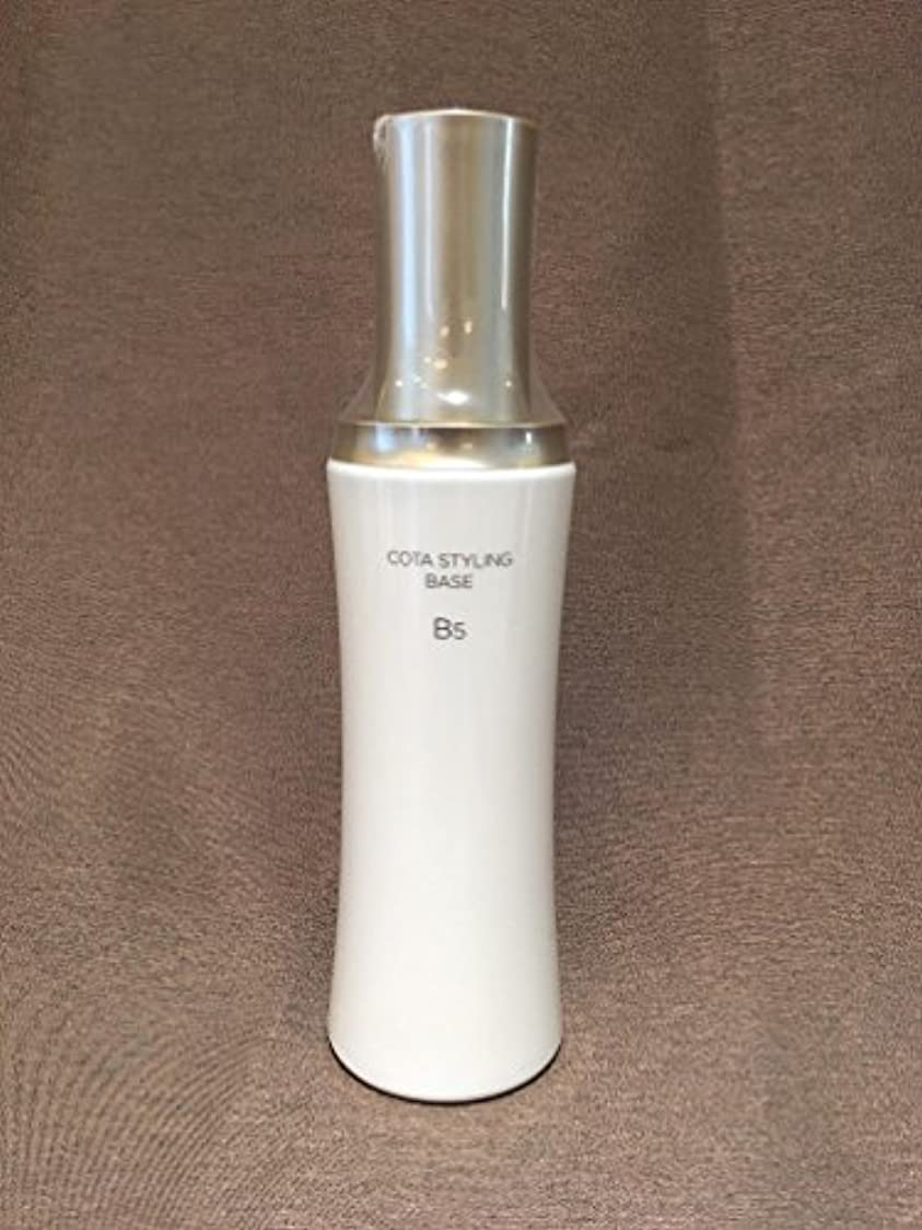 例抽象化戦争コタ スタイリング ベース B5 200g