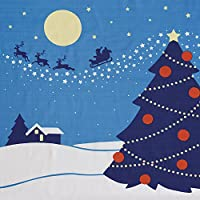 四季彩布 二巾風呂敷 「クリスマス」