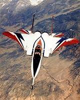 アメリカ空軍 F-15 スペシャルマーキング ポスター