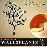 STARDUST プラント ウォールステッカー 植物 モチーフ 大きめ 木 ツリー インテリア 小物 お洒落 シール 貼り付け (Bタイプ) SD-PLASTE-B