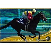 オーナーズホース/OWNERS HORSE【エルコンドルパサー】OH01-H089
