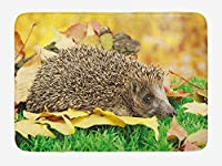 Hedgehog Bath Mat, Cute Little Hedgehog on Autumn Leaves in Forest Scenes from World, Plush Bathroom Decor Mat with Non Slip Backing, 23.6 W X 15.7 W Inches, Brown Earth Yellow Green