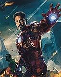 直輸入、大きな写真「アベンジャーズ」ロバート・ダウニー・Jr、The Avengers