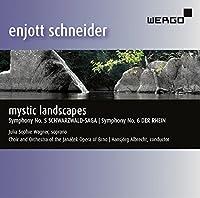 Schneider: Mystic Landscapes