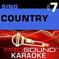 Sing Country (Male) Vol. 7 [KARAOKE]