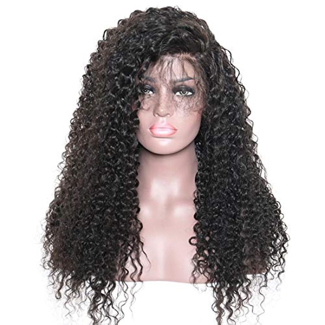 パンチ便利さ下るKoloeplf ウィッグキャップ付き前髪レースフロンウィッグ付きレディースロングカーリー合成ウィッグ (Color : Black)