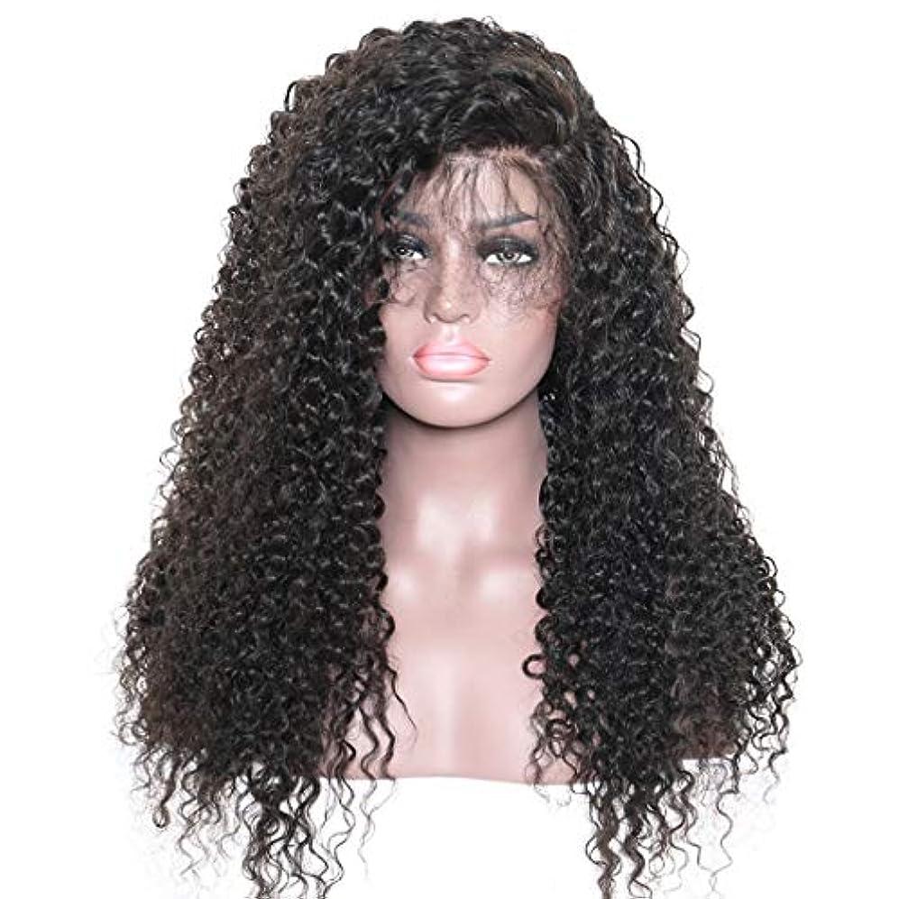 サイト懐疑論口ひげKoloeplf ウィッグキャップ付き前髪レースフロンウィッグ付きレディースロングカーリー合成ウィッグ (Color : Black)