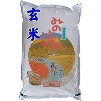 福島県産 玄米 石抜き処理済 チヨニシキ 5kg 平成29年産