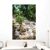 """ジャマイカDunn 's River Falls壁壁画by Wallmonkeys Peel and Stickグラフィックwm360716 48""""H x 32""""W - x Large FOT-79146684-48"""