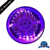 (アマース) AMARS 5M/16.4フィート 3528 SMD ブラックライト 紫外線 395nm-405nm LED照明 テープ固定式 DC 12V LED60個/m 合計LED300個 電球色パープル IP44(Non Waterproof) H&PC-63103