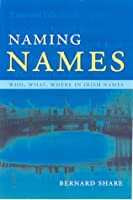 Naming Names: Who, What, Where in Irish Names