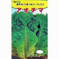 レタス 種 アオチマ 小袋(約20ml)