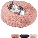 Zenify Pets Calming Dog Bed for Cats or Small Medium Dogs Puppy (50cm, Beige Pink)