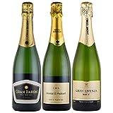 スパークリングワインセット 全てシャンパン製法のCAVA 750mlx3本