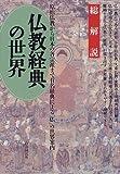 仏教経典の世界 総解説 (総解説シリーズ)