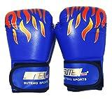 〔mikan〕 ボクシング グローブ 「大人用 青」 選べるカラー 練習 用 初心者 格闘技