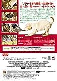 マーリー 世界一おバカな犬が教えてくれたこと (特別編) [DVD] 画像