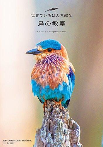 世界でいちばん素敵な鳥の教室 (世界でいちばん素敵な教室)の詳細を見る